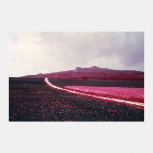 Simone Kappeler - Hegau Photos